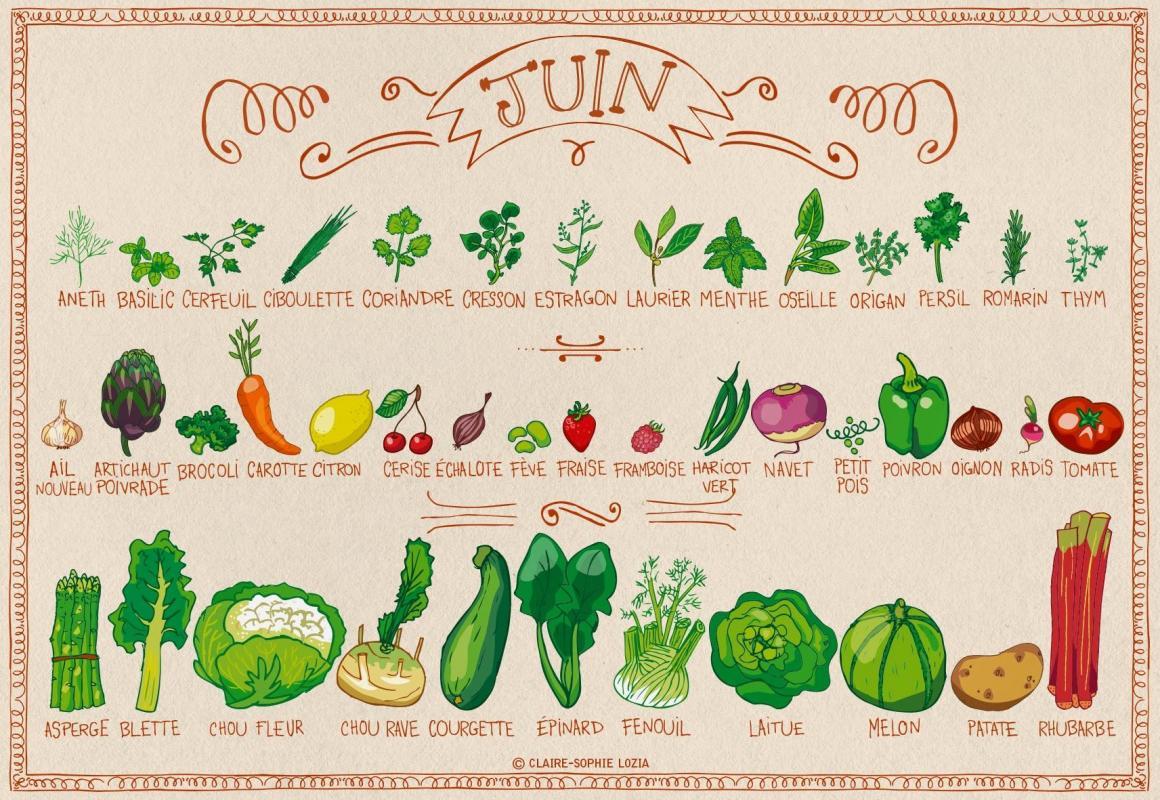 Calendrier des fruits et legumes mois de juin
