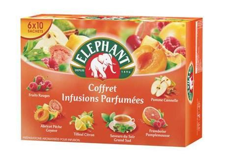 Coffret infusions parfumees 60 sachets elephant pour professionnels