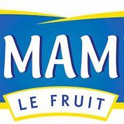 Saint Mamet